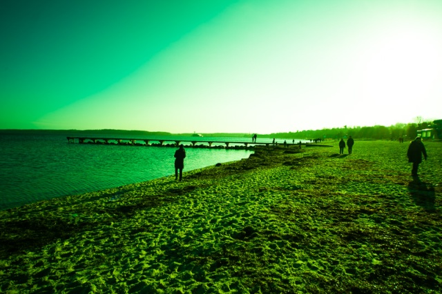 templatecrossedgreen-2