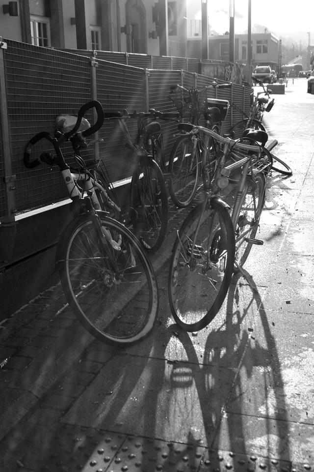 cito_mr3_bikesun
